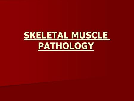 SKELETAL MUSCLE PATHOLOGY. Normal skeletal muscle.