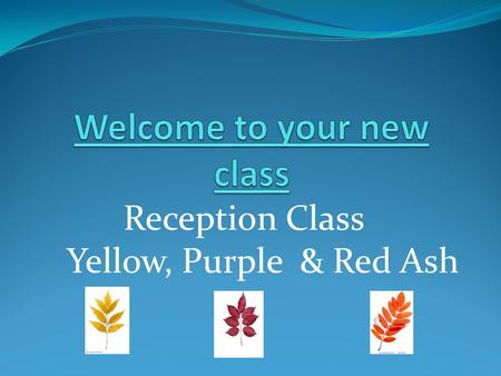 Reception Class Yellow, Purple & Red Ash. Timetable 2012 -21013.