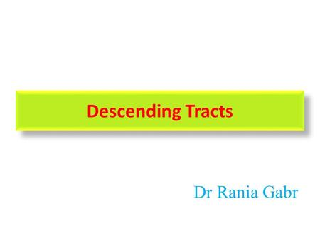 Descending Tracts Dr Rania Gabr.
