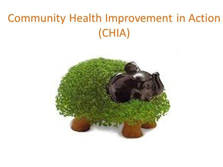 Community Health Improvement in Action (CHIA). CHIA Overview What is the CHIA project? What distinguishes funded partners from other participants? What.