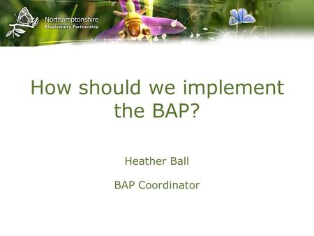 How should we implement the BAP? Heather Ball BAP Coordinator.