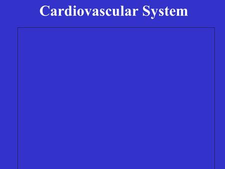 Cardiovascular System Two divisions Cardiovascular System Two divisions: pulmonary.