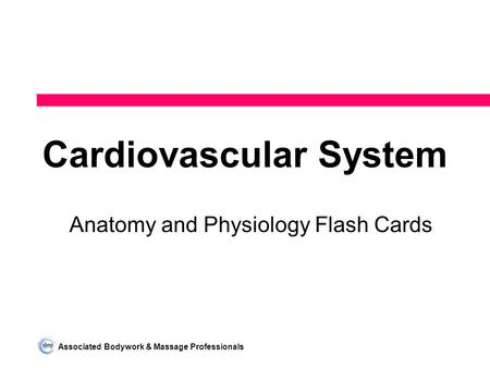 Associated Bodywork & Massage Professionals Cardiovascular System Anatomy and Physiology Flash Cards.