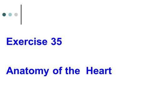 Exercise 35 Anatomy of the Heart.