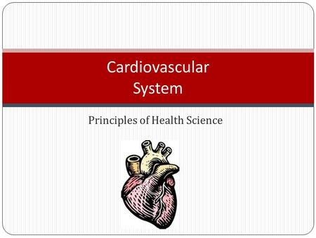 Principles of Health Science Cardiovascular System.
