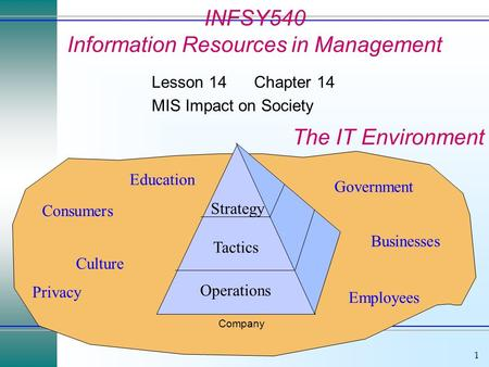 1 Operations Tactics Strategy Government Consumers Employees Culture Businesses Privacy Education Company The IT Environment INFSY540 Information Resources.