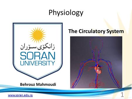 Www.soran.edu.iq Physiology Behrouz Mahmoudi The Circulatory System 1.
