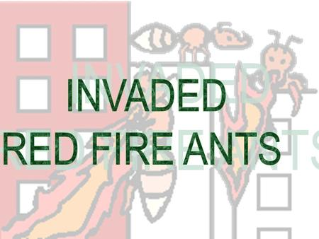 Originally from tropical South America, the red fire ant gained entry to the United States through the port of Mobile, Alabama in the late 1930's on cargo.