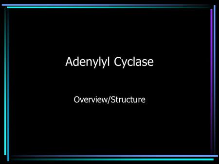 Adenylyl Cyclase Overview/Structure. What does it do?