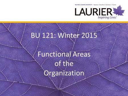 BU 121: Winter 2015 Functional Areas of the Organization.
