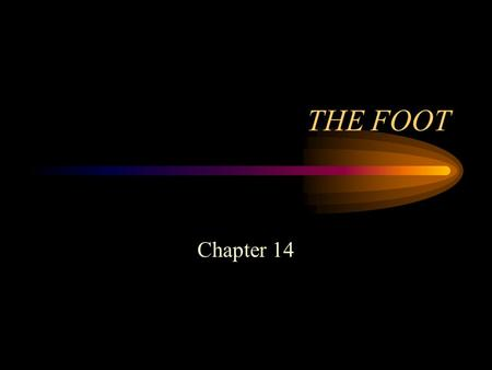THE FOOT Chapter 14. Introduction The traditional sports activities in which athletes compete at the high school, college and professional level all involve.