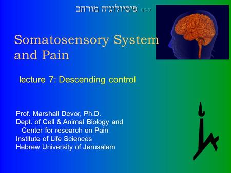 Somatosensory System and Pain Prof. Marshall Devor, Ph.D. Dept. of Cell & Animal Biology and Center for research on Pain Institute of Life Sciences Hebrew.
