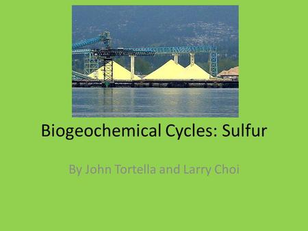 Biogeochemical Cycles: Sulfur By John Tortella and Larry Choi.