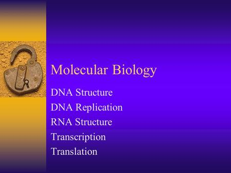Molecular Biology DNA Structure DNA Replication RNA Structure Transcription Translation.