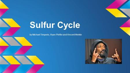 What is it? Sulfur Cycle-global circulation of sulfur from the environment to living organisms and back to the environment.