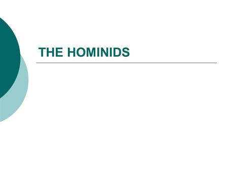 THE HOMINIDS. Ardipithecus ramidus  5.8-4.4 Mya  Distribution: Ethiopia  Very similar to chimps  Molar are apelike: Canines are more hominid-like.