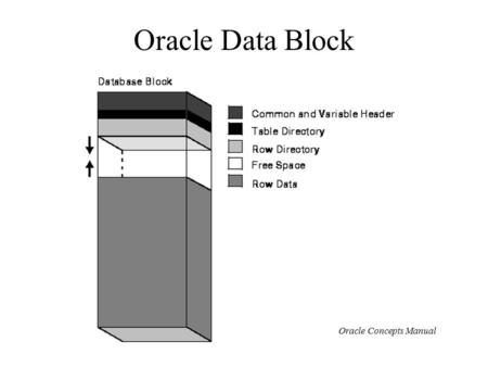 Oracle Data Block Oracle Concepts Manual. Oracle Rows Oracle Concepts Manual.