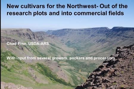 New cultivars for the Northwest- Out of the research plots and into commercial fields Chad Finn, USDA-ARS . With input from several growers, packers and.