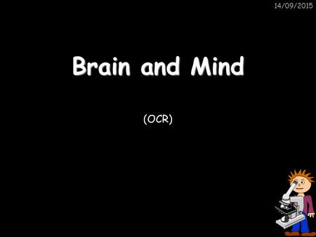 14/09/2015 Brain and Mind (OCR). 14/09/2015 The Nervous System The CENTRAL NERVOUS SYSTEM (CNS) enables us to react to our surroundings. It consists mainly.