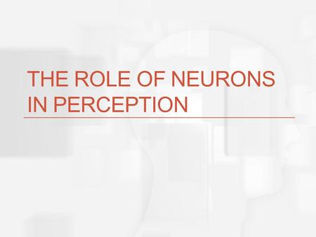 THE ROLE OF NEURONS IN PERCEPTION Basic Question How can the messages sent by neurons represent objects in the environment?