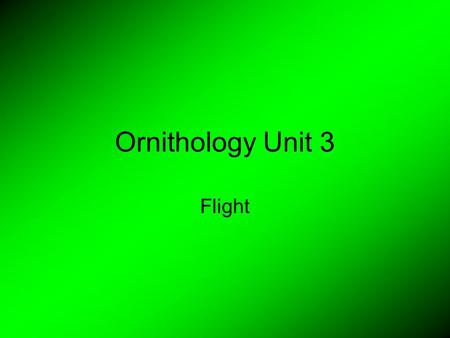 Ornithology Unit 3 Flight. Flight Variations Some birds can hover Some birds can dive.