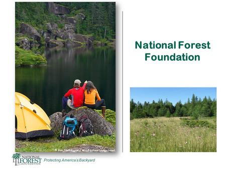 Protecting America's Backyard National Forest Foundation.