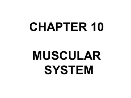 CHAPTER 10 MUSCULAR SYSTEM. 2 Muscles of the face & head (Aponeurosis/Fascia: Flat, sheet-like tendon) Figure 10.6 page: 331 A. Epicranius- frontalis.