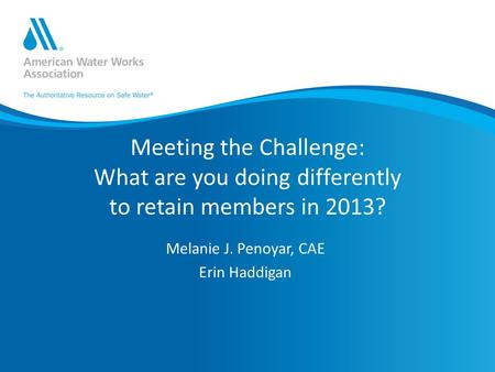 Meeting the Challenge: What are you doing differently to retain members in 2013? Melanie J. Penoyar, CAE Erin Haddigan.