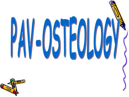 OSTEOLOGY OSTEOLOGY : is a science which learn about bones and their relation Bones are connected each other term as: skeleton  Skeleton: is applied.