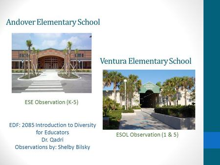 Andover Elementary School ESE Observation (K-5) Ventura Elementary School ESOL Observation (1 & 5) EDF: 2085 Introduction to Diversity for Educators Dr.