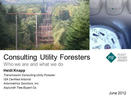 Consulting Utility Foresters Who we are and what we do June 2012 Heidi Knapp Transmission Consulting Utility Forester ISA Certified Arborist Arbormetrics.