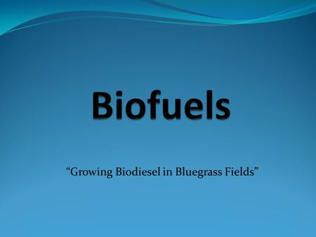 """Growing Biodiesel in Bluegrass Fields"". Background ""The American economy depends on petroleum for transportation, which has created energy security concerns,"