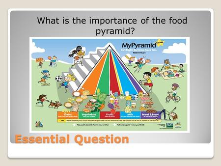 Essential Question What is the importance of the food pyramid?