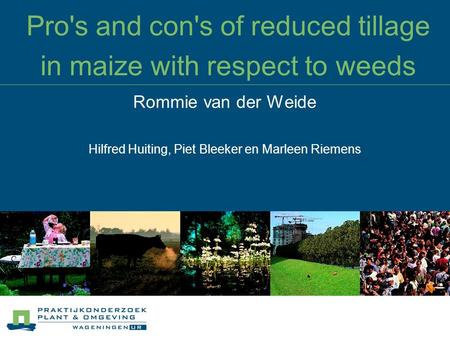 Pro's and con's of reduced tillage in maize with respect to weeds Rommie van der Weide Hilfred Huiting, Piet Bleeker en Marleen Riemens.