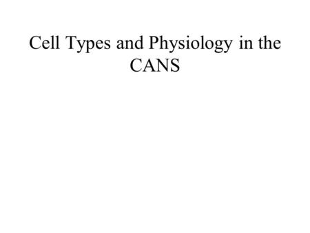 Cell Types and Physiology in the CANS. Major Components of the Central Auditory Nervous System (CANS) VIIIth cranial nerve Cochlear Nucleus Superior Olivary.