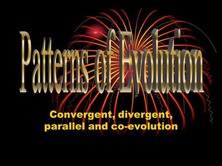 Convergent, divergent, parallel and co-evolution.