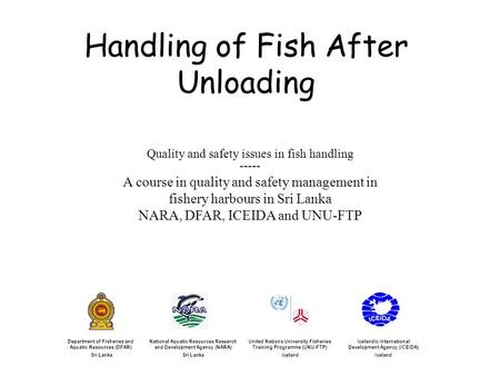 Handling of Fish After Unloading Icelandic International Development Agency (ICEIDA) Iceland United Nations University Fisheries Training Programme (UNU-FTP)