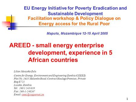1 EU Energy Initiative for Poverty Eradication and Sustainable Development Lilian Munyeka Zulu Centre for Energy, Environment and Engineering Zambia (CEEEZ)
