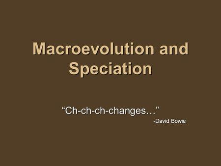 "Macroevolution and Speciation ""Ch-ch-ch-changes…"" -David Bowie."