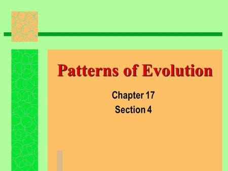 Patterns of Evolution Chapter 17 Section 4. Macroevolution/Microevolution family large long  Macroevolution- One genus or family evolves into another….due.
