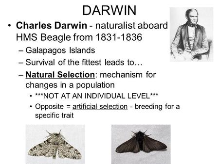 a overview of charles darwin ideas on evolution and natural selection Famous for his theories of evolution and natural selection menu  charles darwin,  in which wallace outlined his ideas of natural selection that were.