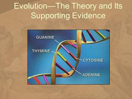 Evolution—The Theory and Its Supporting Evidence.