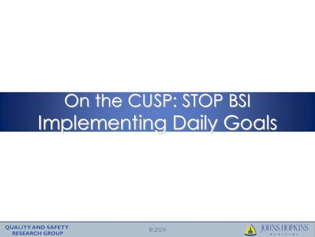 © 2009 On the CUSP: STOP BSI Implementing Daily Goals.