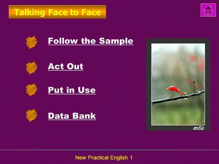 New Practical English 1 Follow the Sample Act Out Put in Use Talking Face to Face Data Bank.