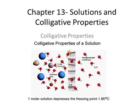 Chapter 13- Solutions and Colligative Properties Colligative Properties.