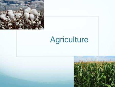 Agriculture. What is Agriculture? Agriculture is also called farming is the cultivation of animals, plants, and other life forms for food, and other products.