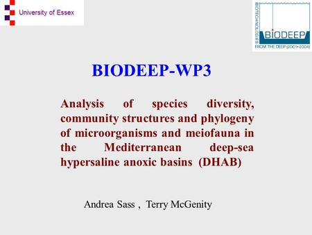 University of Essex BIODEEP-WP3 Analysis of species diversity, community structures and phylogeny of microorganisms and meiofauna in the Mediterranean.