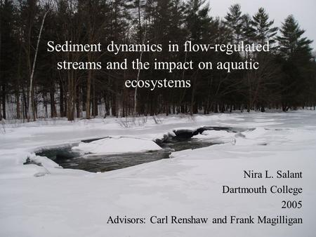 Sediment dynamics in flow-regulated streams and the impact on aquatic ecosystems Nira L. Salant Dartmouth College 2005 Advisors: Carl Renshaw and Frank.