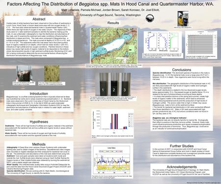 Factors Affecting The Distribution of Beggiatoa spp. Mats In Hood Canal and Quartermaster Harbor, WA. Matt Lonsdale, Pamela Michael, Jordan Brown, Sarah.