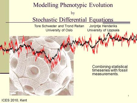 Modelling Phenotypic Evolution by Stochastic Differential Equations Combining statistical timeseries with fossil measurements. Tore Schweder and Trond.